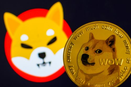 Dog fight: Shiba Inu price jumps 45 percent to soar past Dogecoin