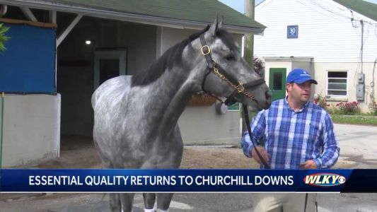 Essential Quality returns to Churchill Downs after Belmont Stakes victory