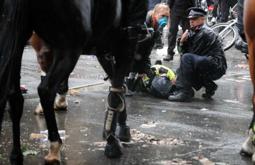Video: Horse runs wild amid protest after officer falls off its back