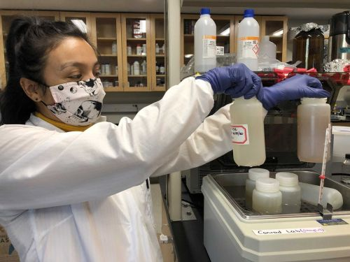 How testing sewage could help slow the spread of COVID-19