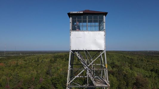 'Absolutely Gorgeous': 100-Year-Old Fire Tower Offers Tree-Top Views In Northern Minnesota