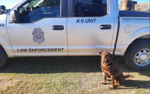 Dog helps lead game warden to suspect at Kansas lake