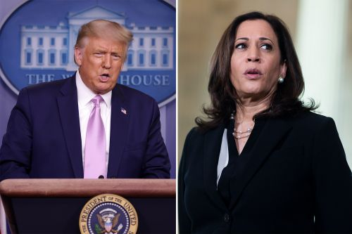 Trump calls Kamala Harris an 'opponent everyone dreams of' in Twitter burn