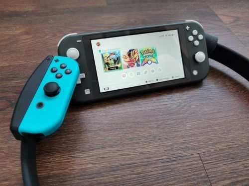 Switch Lite is great on the go, but does it work with Ring Fit Adventure?