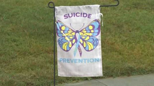 'Hope lives in South Carolina;' Mental health professionals get message out