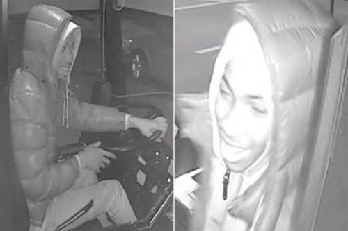 Thief smiles as he takes MTA bus on a joyride to Brooklyn