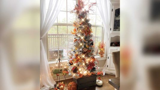 These fall 'Christmas' trees may convince you to put your tree up early