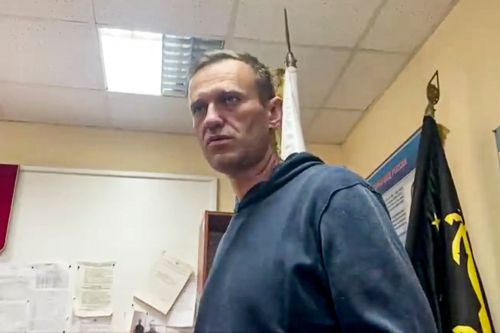 Russian judge rules Kremlin critic Alexei Navalny must spend 30 days in jail