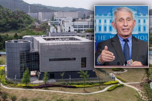 Fauci denies scientists 'deliberately suppressed' Wuhan lab leak theory