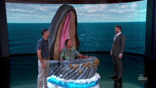 Cape Cod lobster diver ends up back in whale's mouth on 'Jimmy Kimmel Live!'