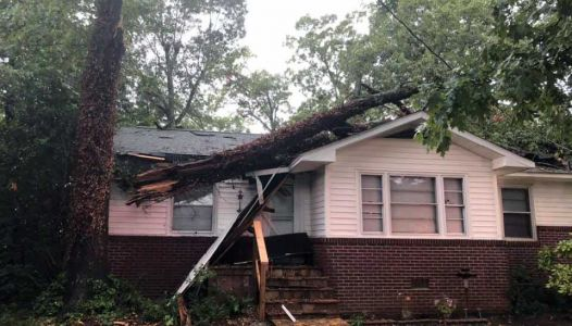 Powerful storms bring trees down on homes, cars; chance of more storms today