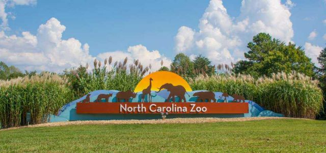 North Carolina zoo employee killed in accident at zoo, officials say