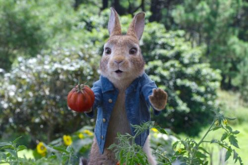 Where to Watch 'Peter Rabbit 2: The Runaway:' When Will the Sequel Be On Streaming?
