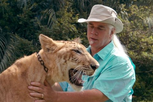The Bonkers Appeal of The Tiger King