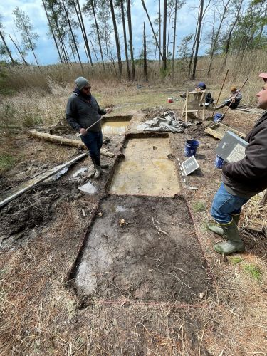 Archaeological Homesite Discovery Linked To Maryland Abolitionist Harriet Tubman