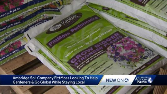 Ambridge soil company PittMoss looking to help gardeners, go global while staying local